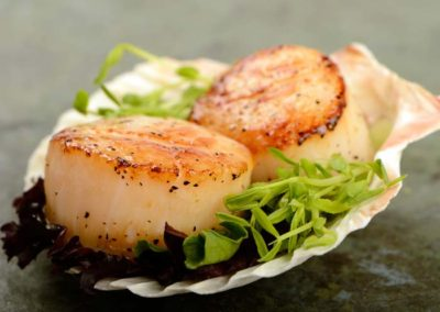 odonnells-market-what-we-offer-seafood-fish-cooked-scallops