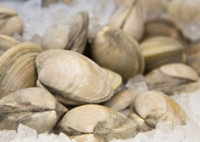 odonnells-market-what-we-offer-seafood-shellfish-clams-1