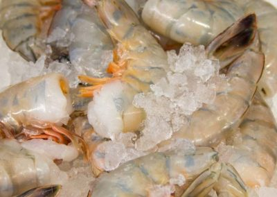 odonnells-market-what-we-offer-seafood-shellfish-jumbo-shrimp