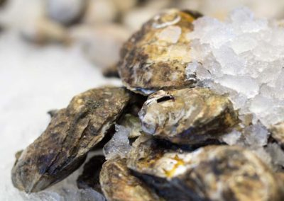 odonnells-market-what-we-offer-seafood-shellfish-oysters